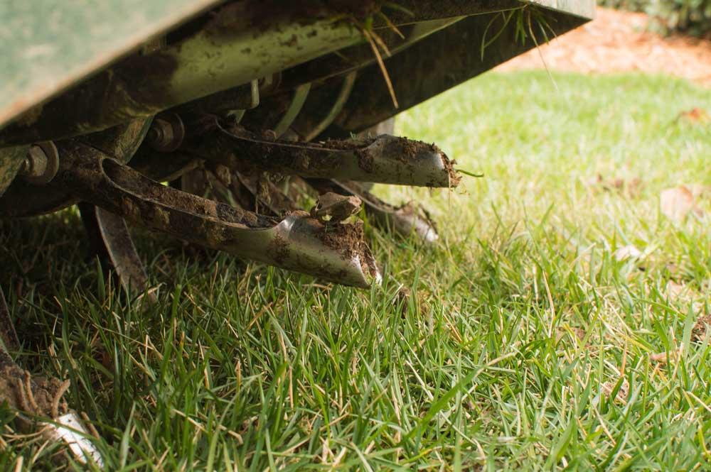 Aerating, Overseeding, and Fertilizing
