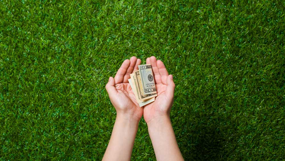 Ways to Save Money on Lawn Care