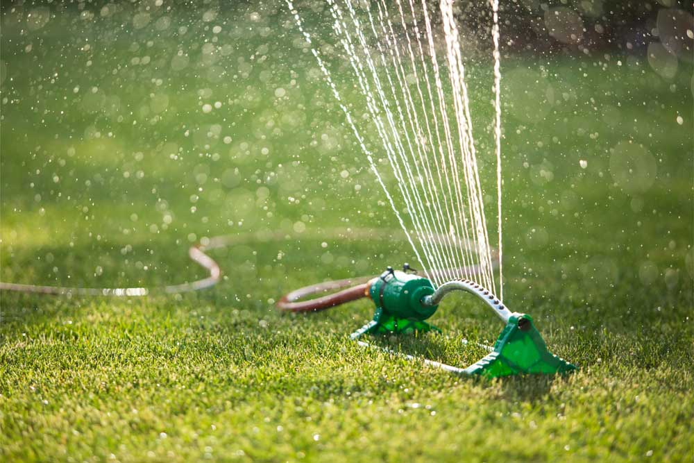 How to Use Less Water on Your Grass During the Hottest Months